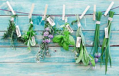 Herbal Medicine Redfern